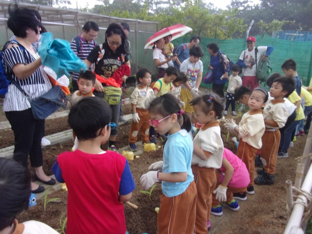 躍思(栢蕙)幼稚園幼兒園的C4A相片27