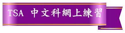 TSA 中文科網上練習